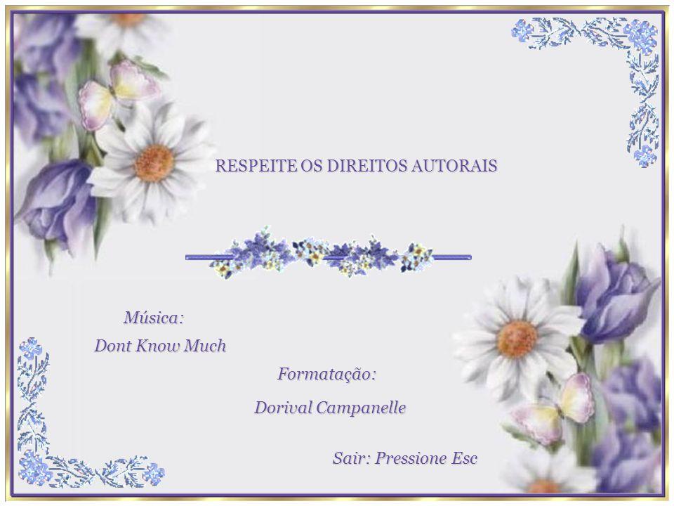 RESPEITE OS DIREITOS AUTORAIS