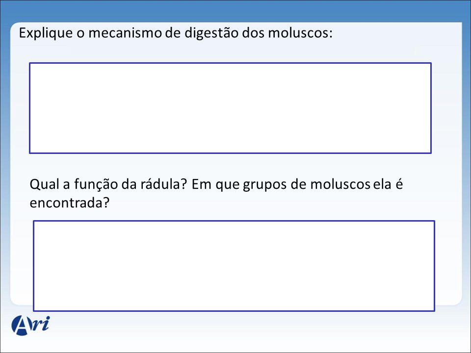 Explique o mecanismo de digestão dos moluscos: