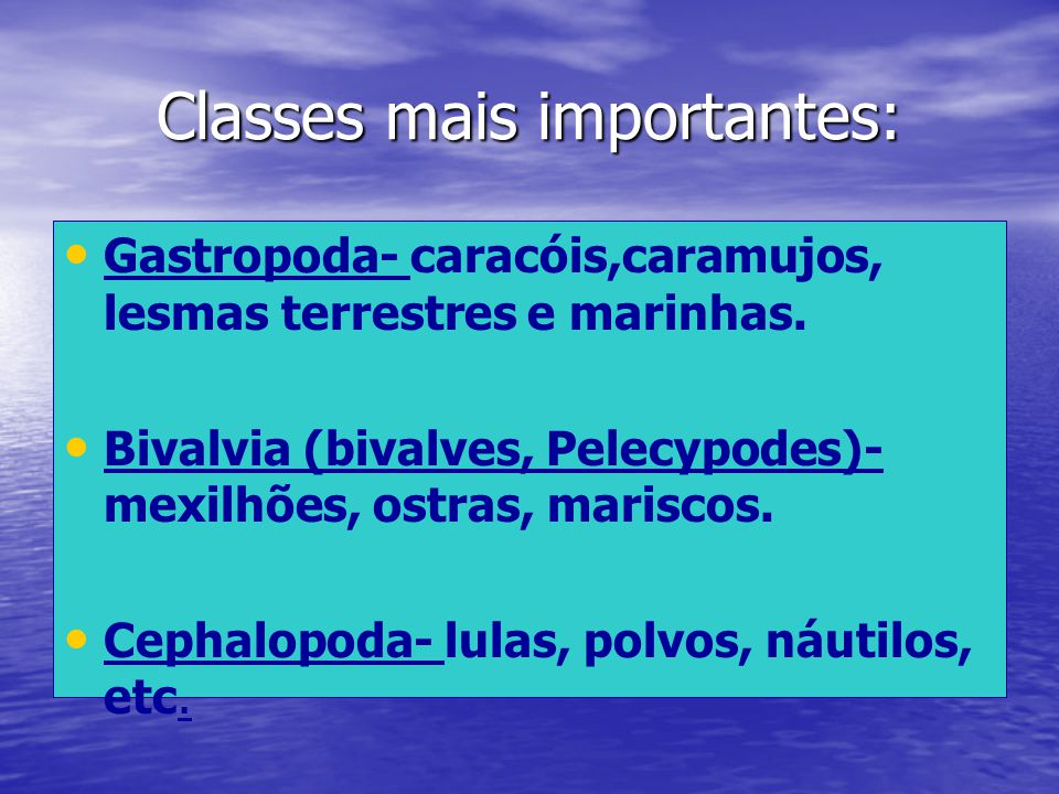 Classes mais importantes:
