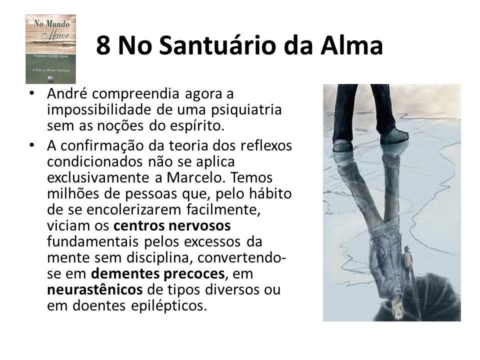 8 No Santuário da Alma André compreendia agora a impossibilidade de uma psiquiatria sem as noções do espírito.