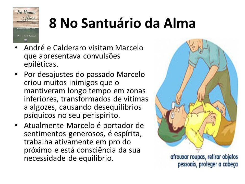 8 No Santuário da Alma André e Calderaro visitam Marcelo que apresentava convulsões epiléticas.