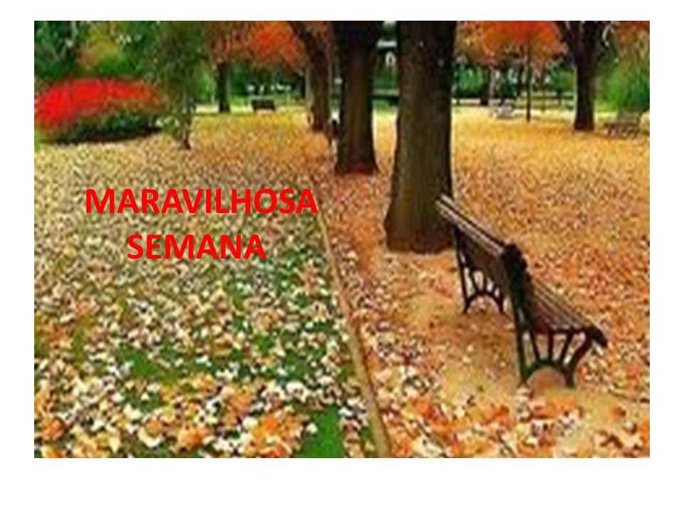 MARAVILHOSA SEMANA