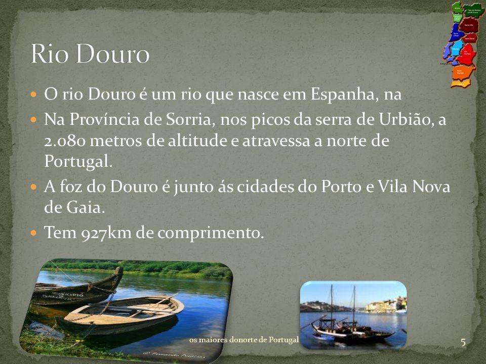 Rio Douro O rio Douro é um rio que nasce em Espanha, na