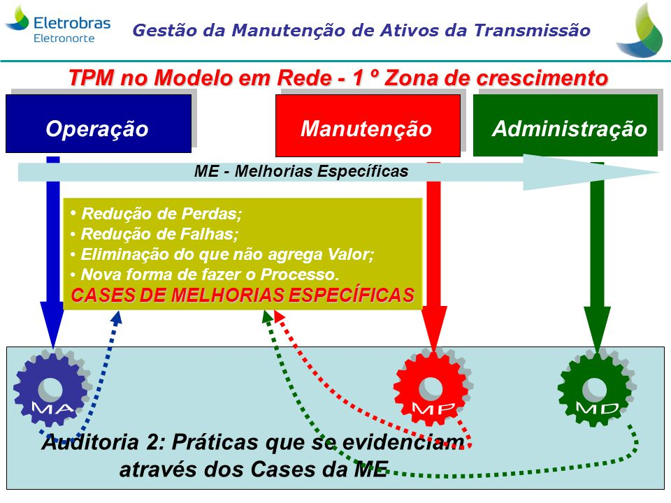 TPM no Modelo em Rede - 1 º Zona de crescimento