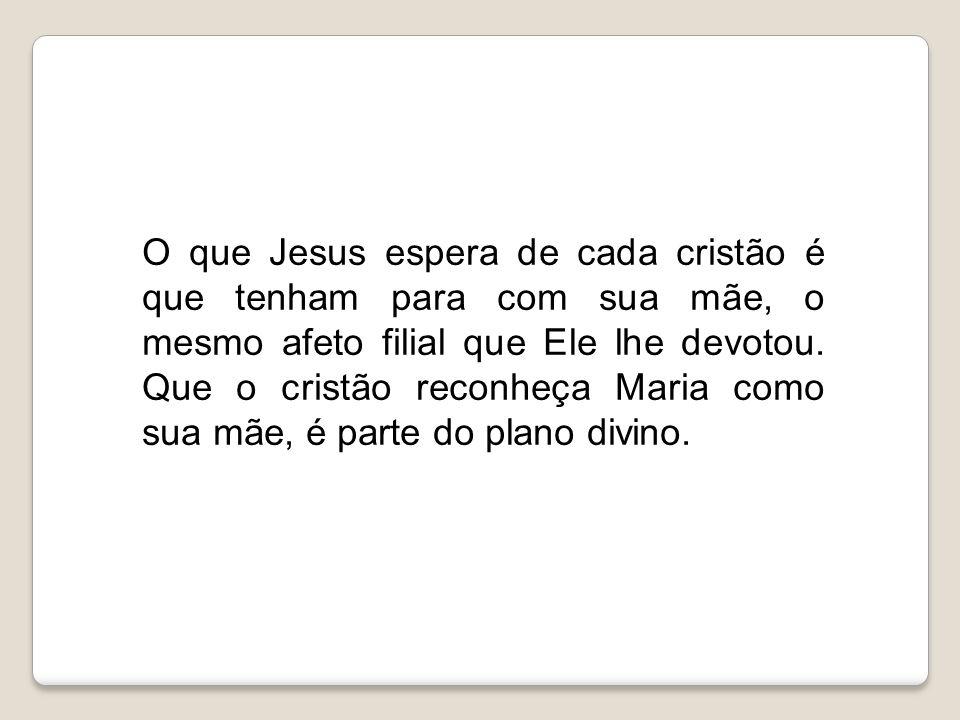 O que Jesus espera de cada cristão é que tenham para com sua mãe, o mesmo afeto filial que Ele lhe devotou.