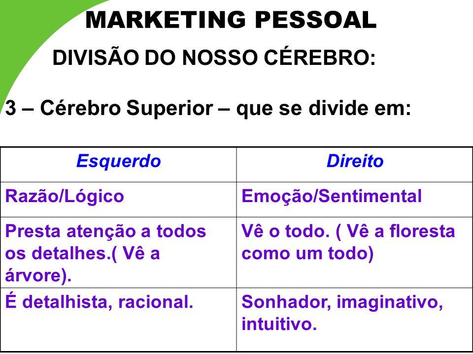 MARKETING PESSOAL DIVISÃO DO NOSSO CÉREBRO: