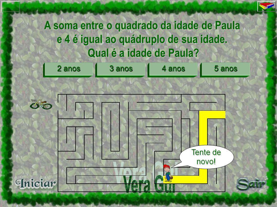 A soma entre o quadrado da idade de Paula