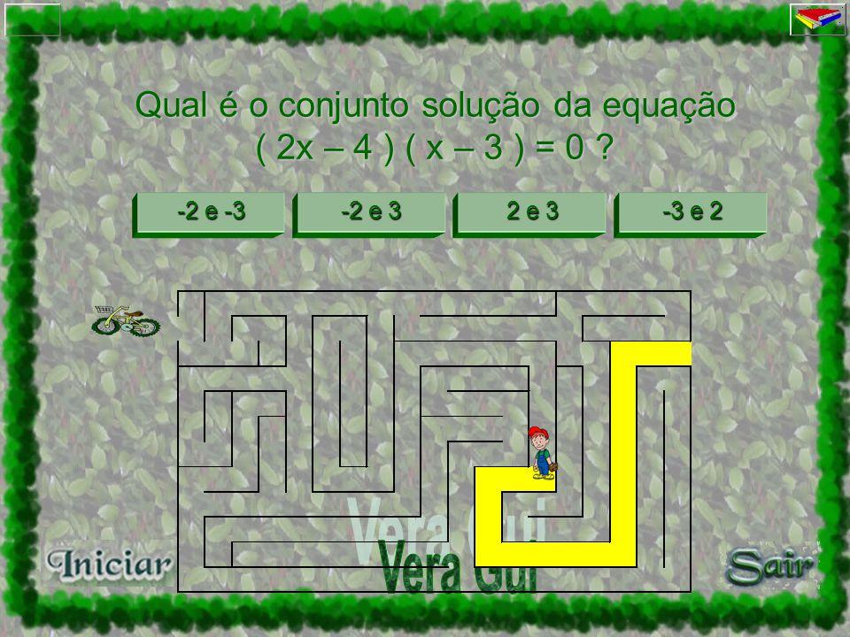 Qual é o conjunto solução da equação