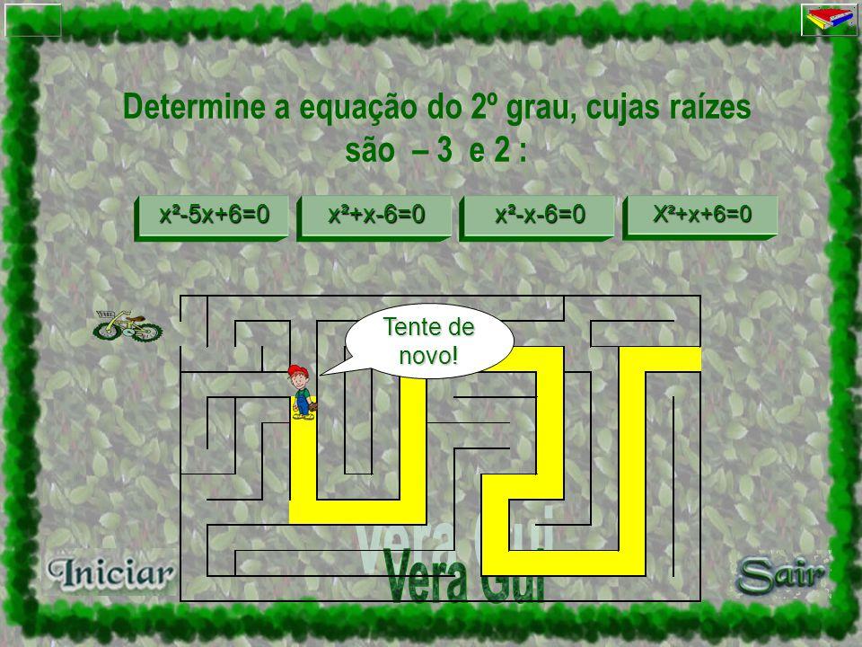 Determine a equação do 2º grau, cujas raízes