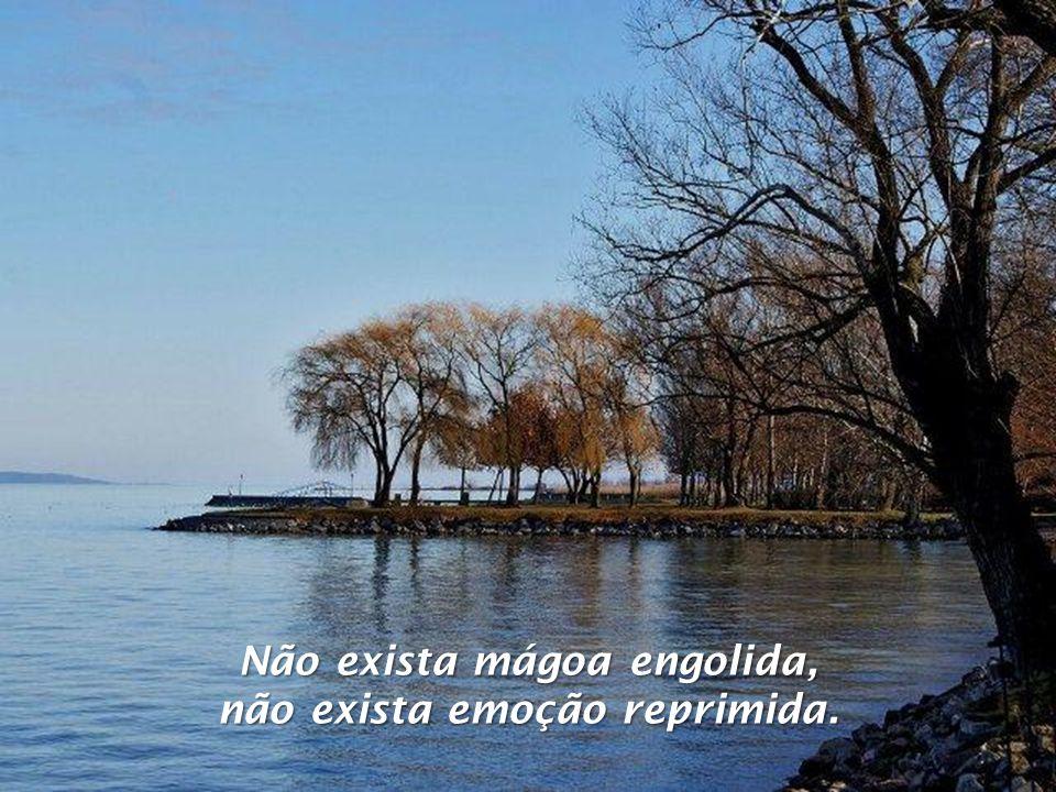 Não exista mágoa engolida, não exista emoção reprimida.