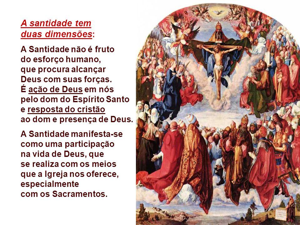 A santidade tem duas dimensões: A Santidade não é fruto