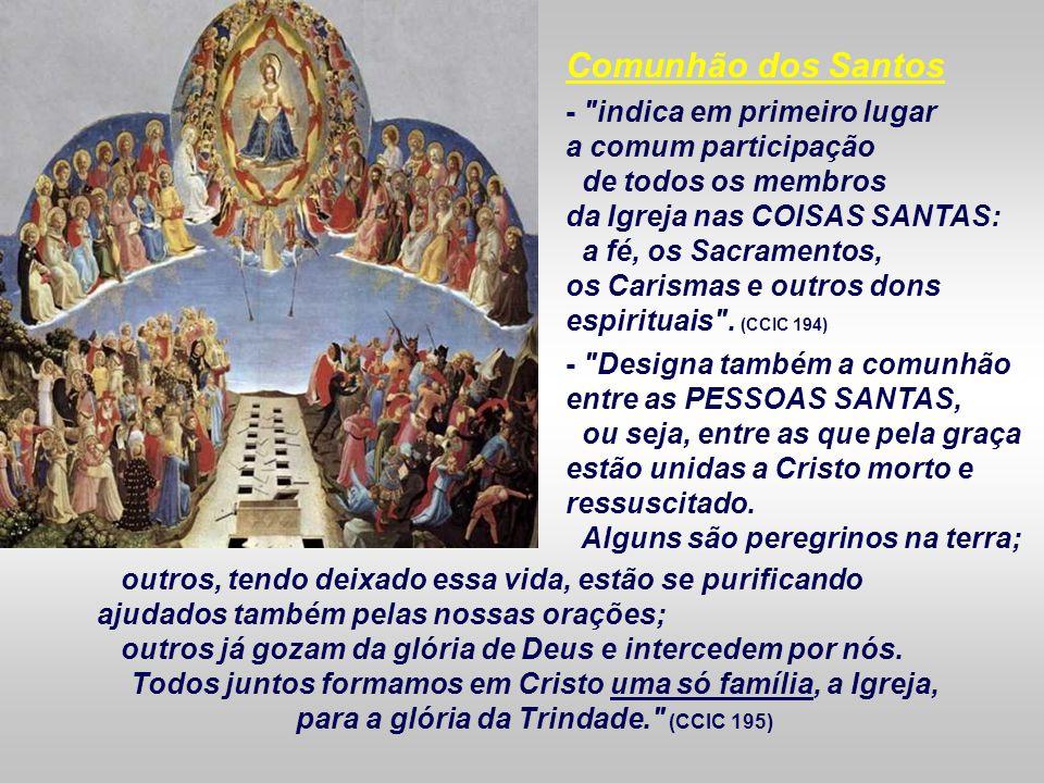 Todos juntos formamos em Cristo uma só família, a Igreja,