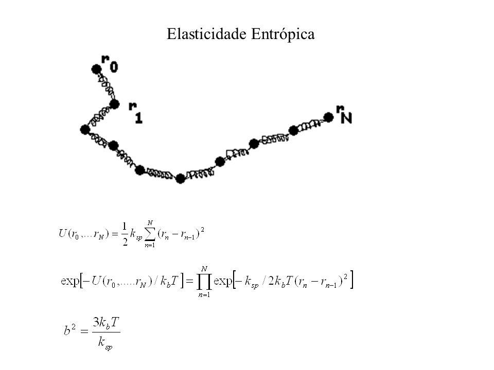 Elasticidade Entrópica