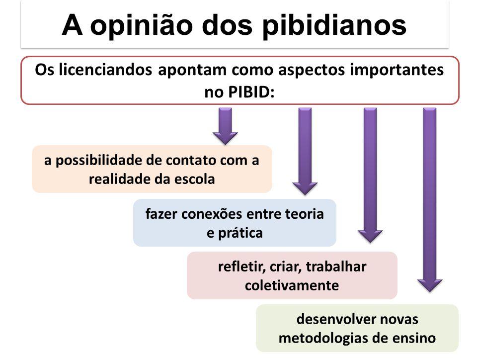 A opinião dos pibidianos