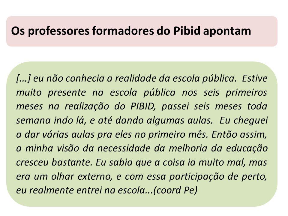 Os professores formadores do Pibid apontam