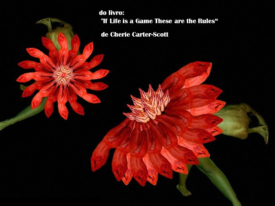 do livro: If Life is a Game These are the Rules de Cherie Carter-Scott