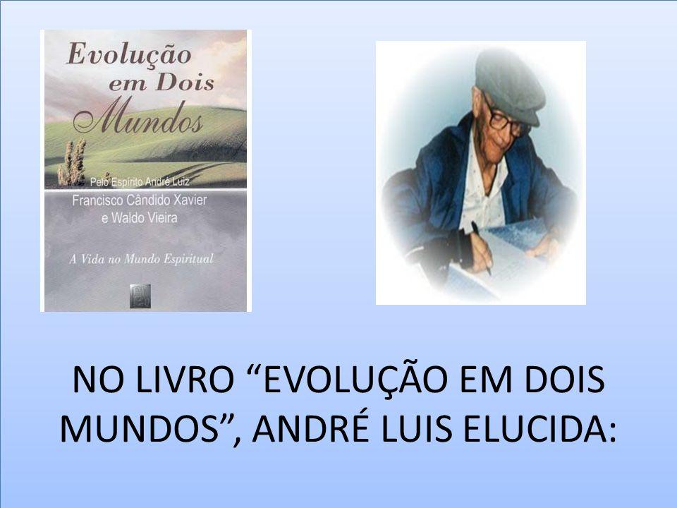 NO LIVRO EVOLUÇÃO EM DOIS MUNDOS , ANDRÉ LUIS ELUCIDA: