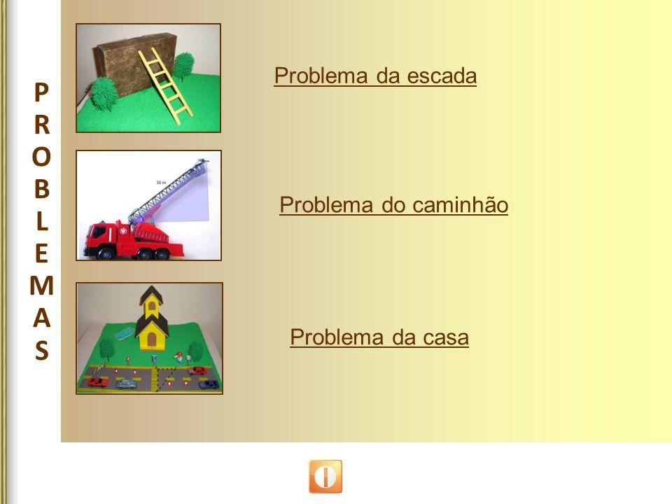 P R O B L E M A S Problema da escada Problema do caminhão