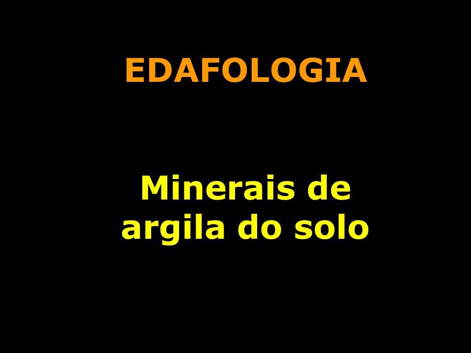 Minerais de argila do solo
