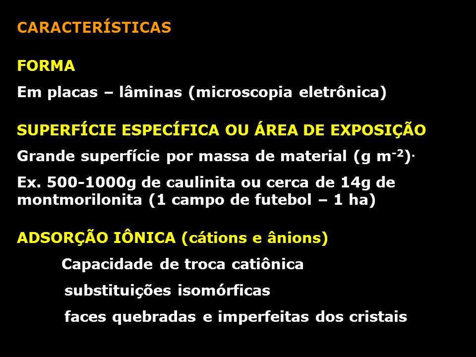 CARACTERÍSTICAS FORMA. Em placas – lâminas (microscopia eletrônica) SUPERFÍCIE ESPECÍFICA OU ÁREA DE EXPOSIÇÃO.