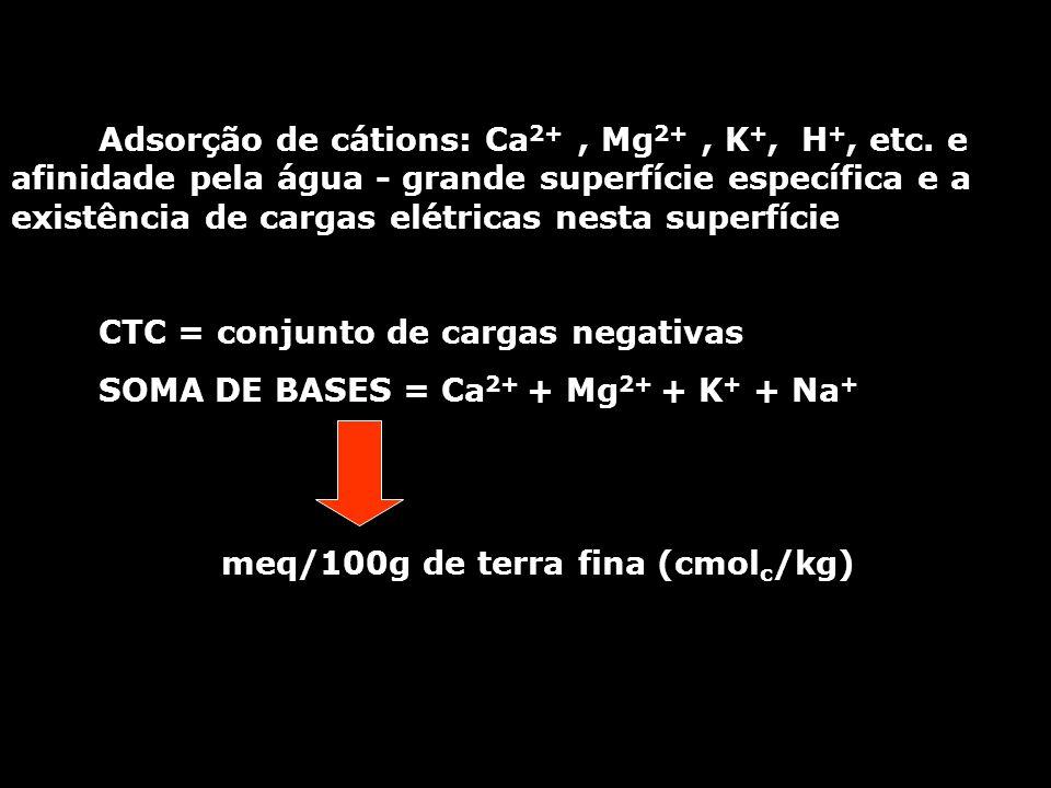 Adsorção de cátions: Ca2+ , Mg2+ , K+, H+, etc