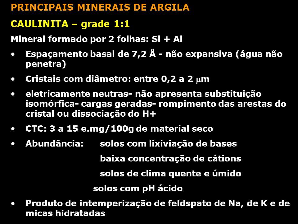 PRINCIPAIS MINERAIS DE ARGILA CAULINITA – grade 1:1