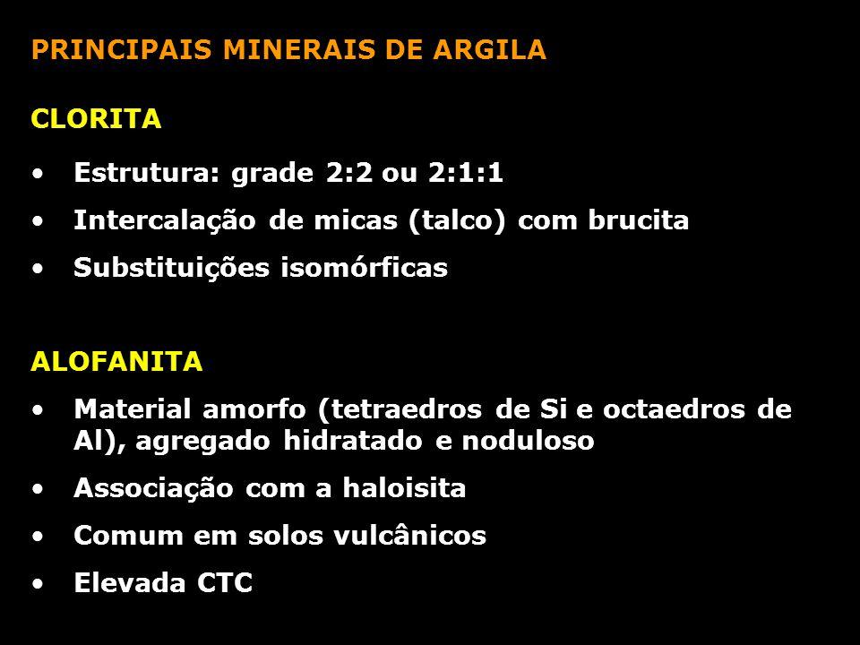 PRINCIPAIS MINERAIS DE ARGILA