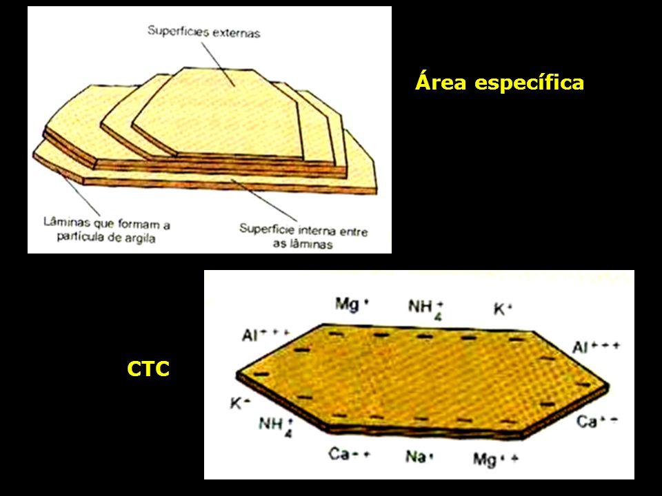 Área específica CTC