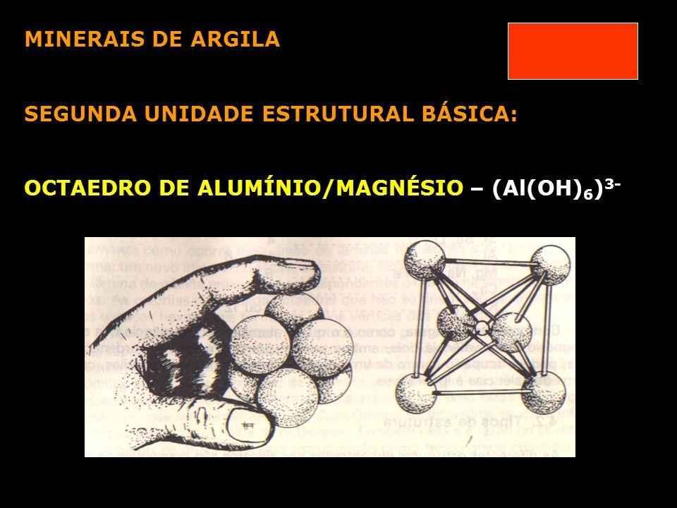 MINERAIS DE ARGILA SEGUNDA UNIDADE ESTRUTURAL BÁSICA: OCTAEDRO DE ALUMÍNIO/MAGNÉSIO – (Al(OH)6)3-