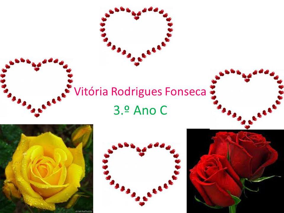 Vitória Rodrigues Fonseca