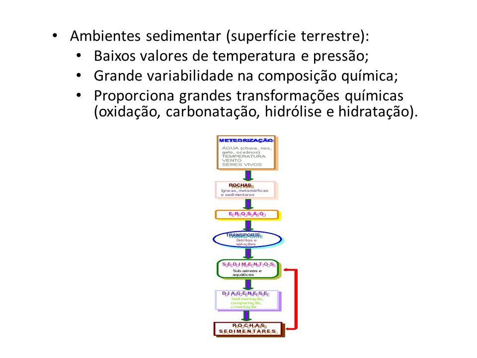 Ambientes sedimentar (superfície terrestre):