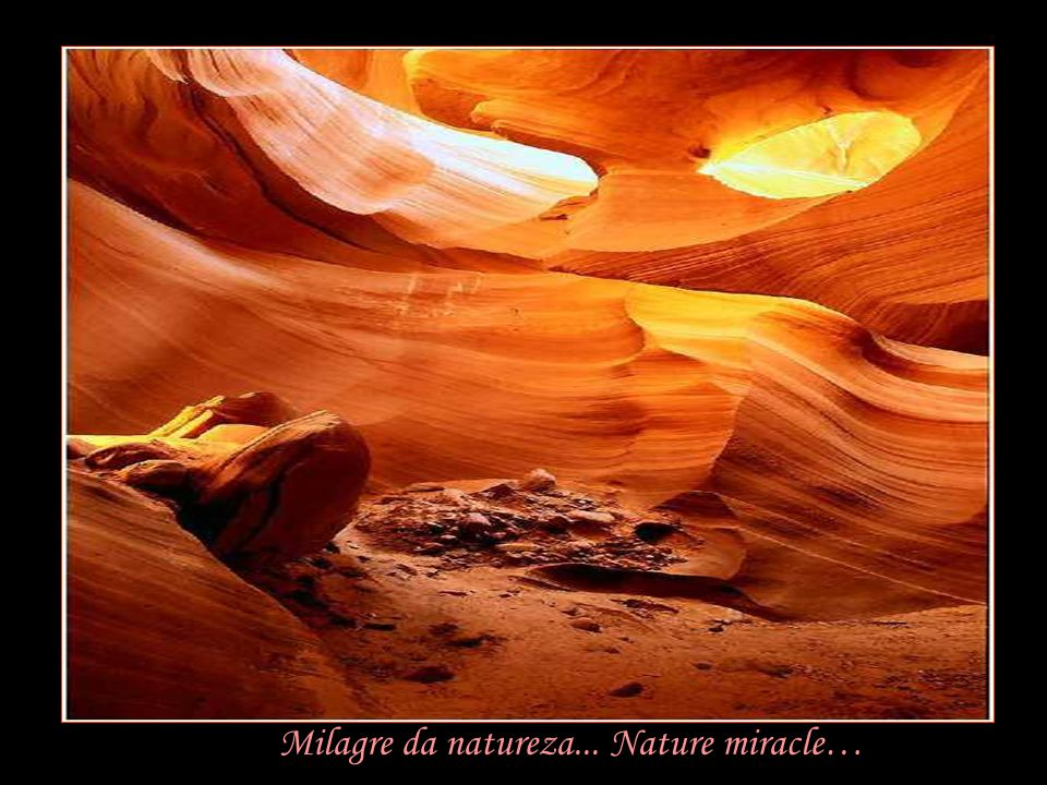 Milagre da natureza... Nature miracle…