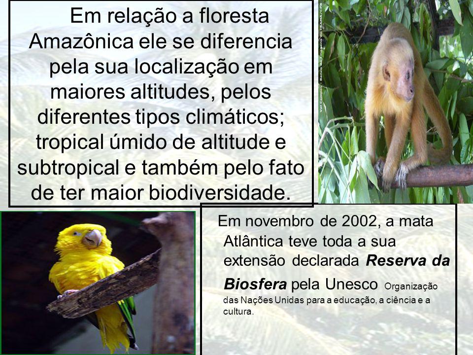 Em relação a floresta Amazônica ele se diferencia pela sua localização em maiores altitudes, pelos diferentes tipos climáticos; tropical úmido de altitude e subtropical e também pelo fato de ter maior biodiversidade.
