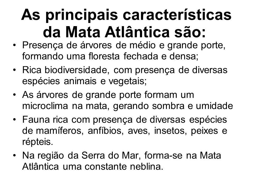 As principais características da Mata Atlântica são: