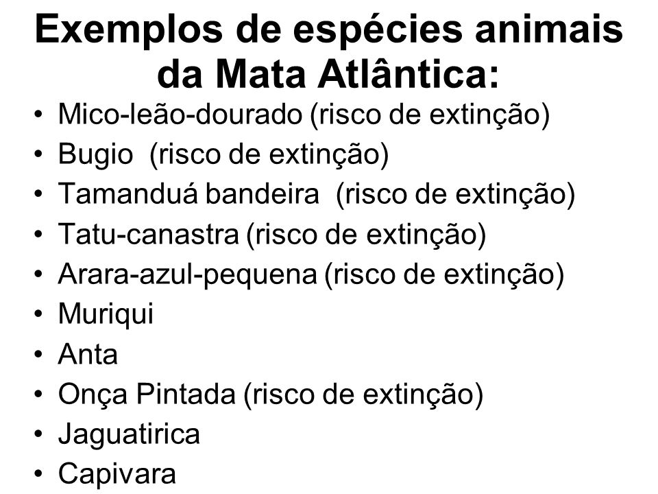 Exemplos de espécies animais da Mata Atlântica: