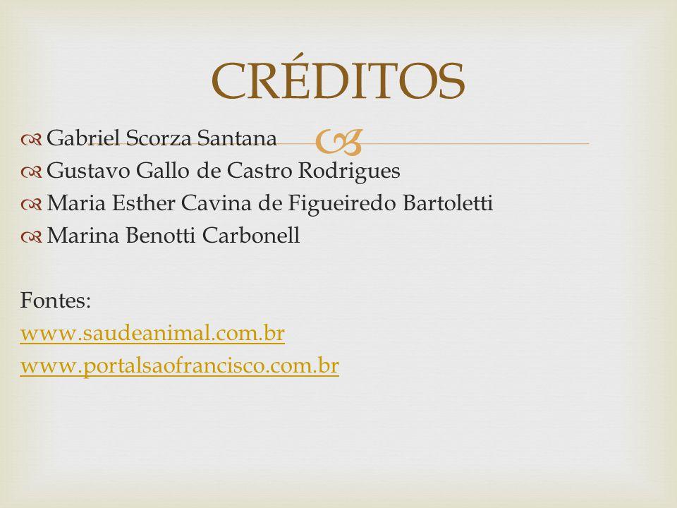 CRÉDITOS Gabriel Scorza Santana Gustavo Gallo de Castro Rodrigues