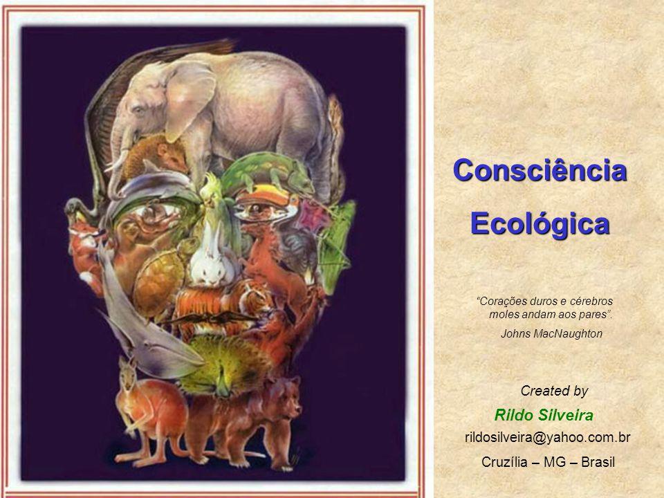 Consciência Ecológica