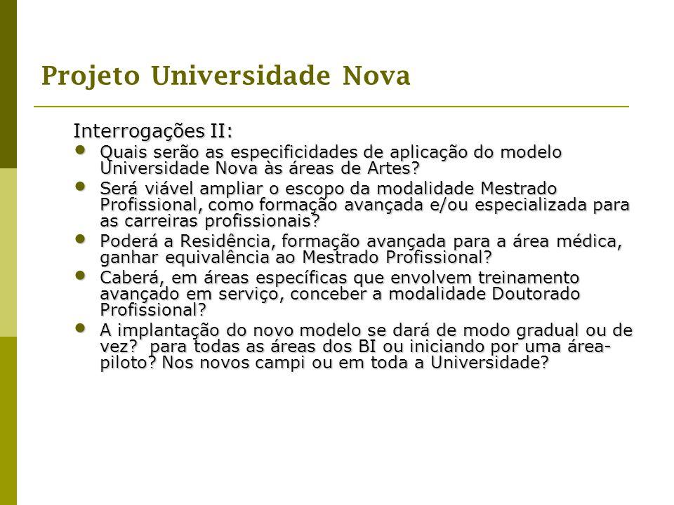 Interrogações II: Quais serão as especificidades de aplicação do modelo Universidade Nova às áreas de Artes