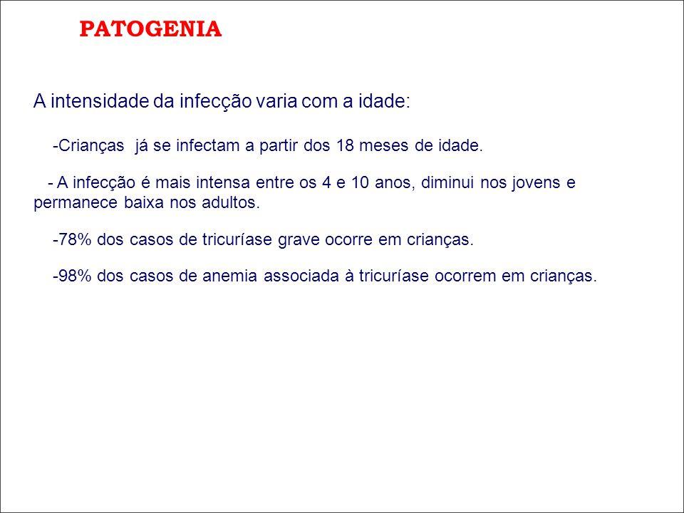PATOGENIA A intensidade da infecção varia com a idade: