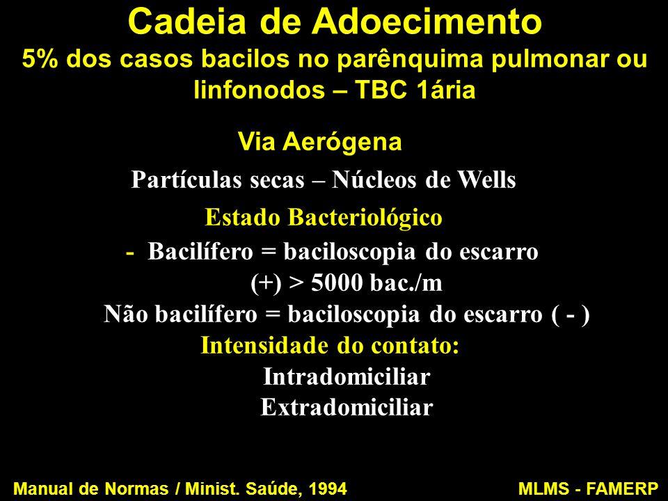 Cadeia de Adoecimento 5% dos casos bacilos no parênquima pulmonar ou linfonodos – TBC 1ária