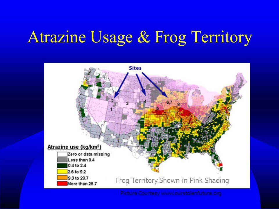 Atrazine Usage & Frog Territory