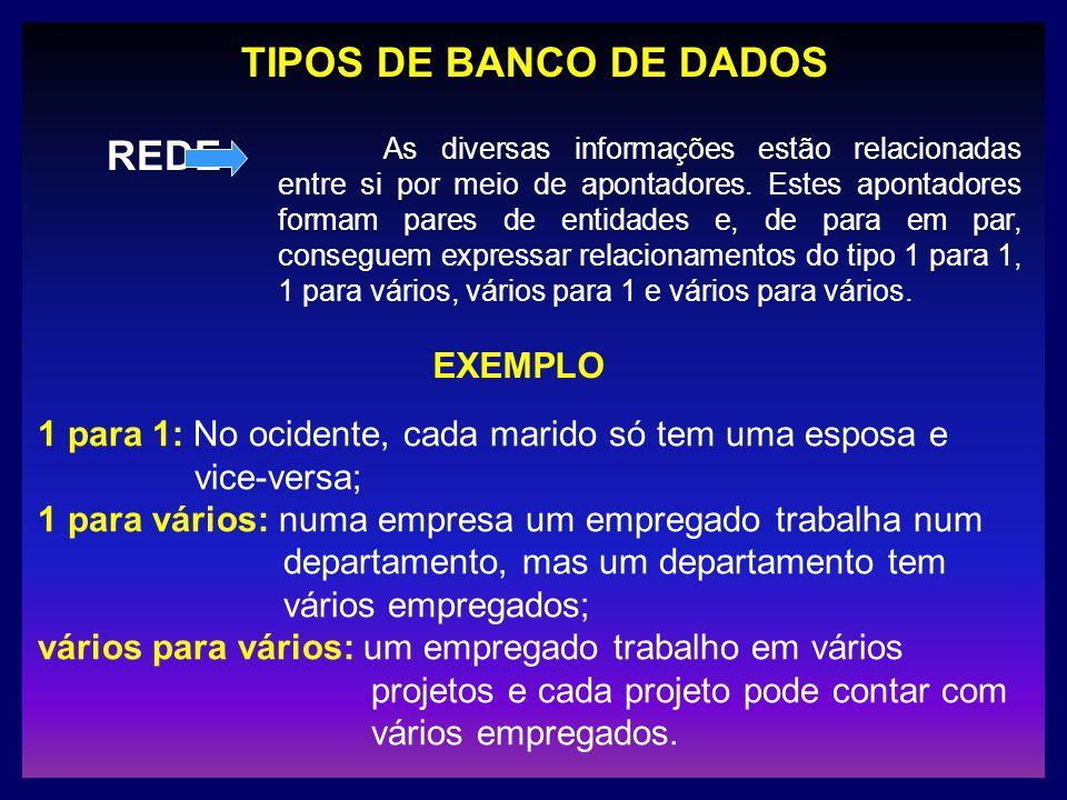 TIPOS DE BANCO DE DADOS REDE