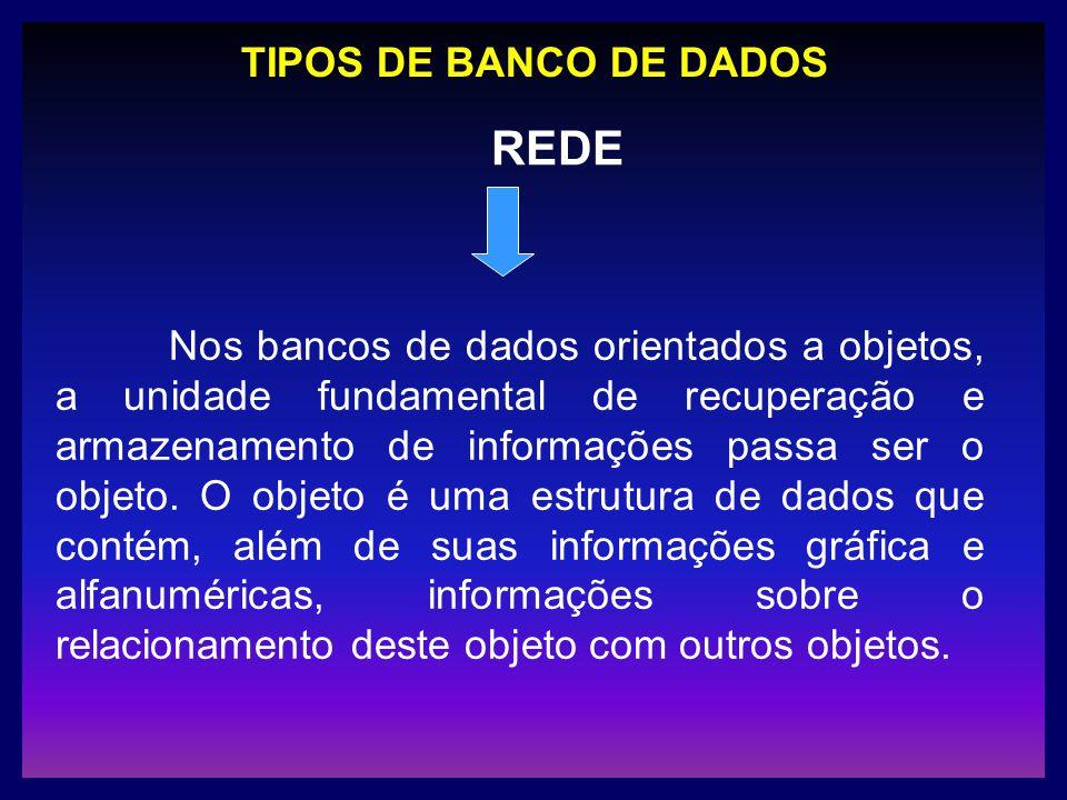 REDE TIPOS DE BANCO DE DADOS