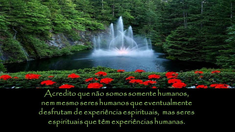 Acredito que não somos somente humanos,