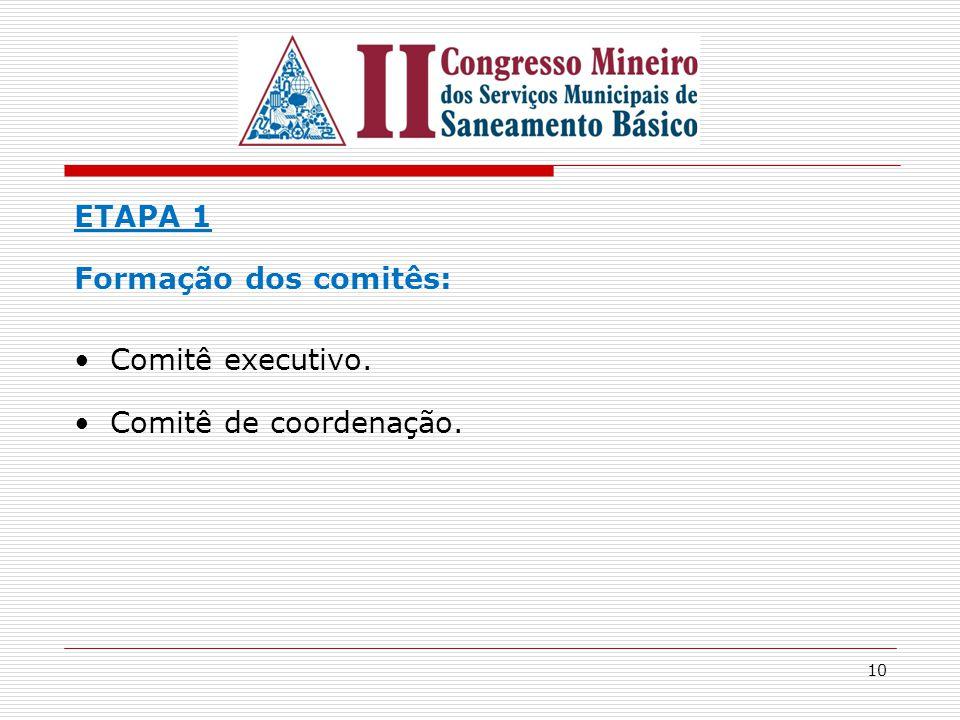 ETAPA 1 Formação dos comitês: Comitê executivo. Comitê de coordenação.