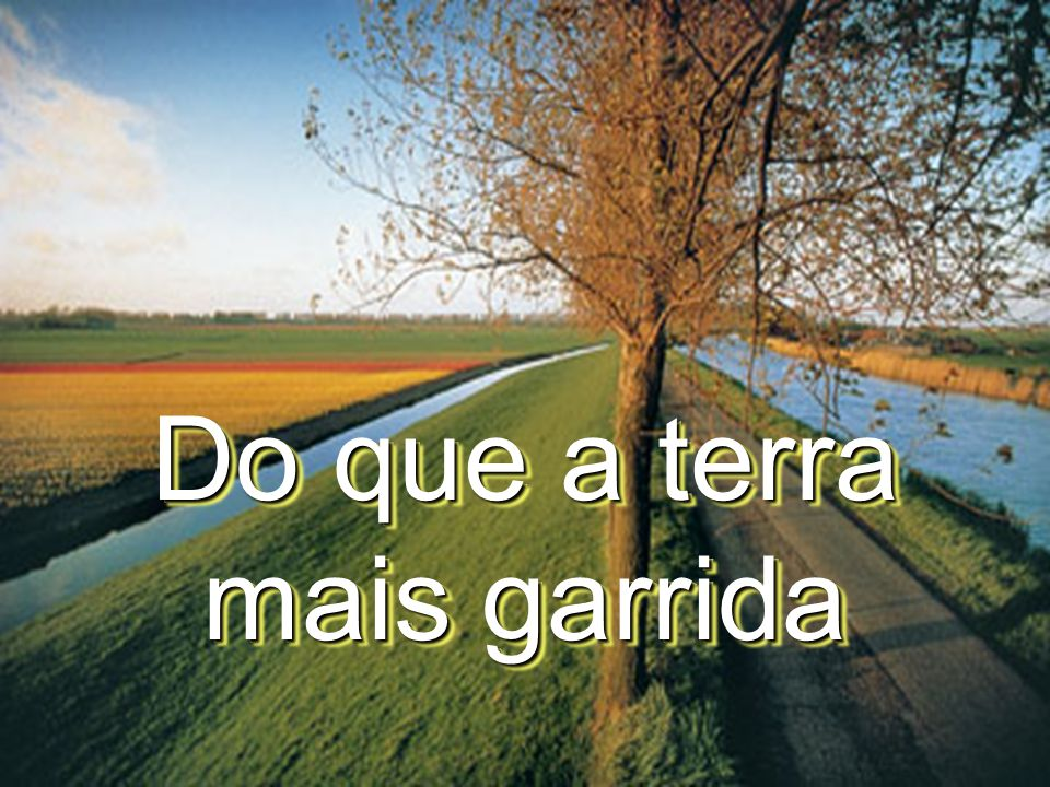 Do que a terra mais garrida