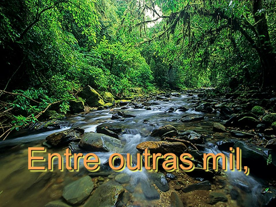 Entre outras mil,
