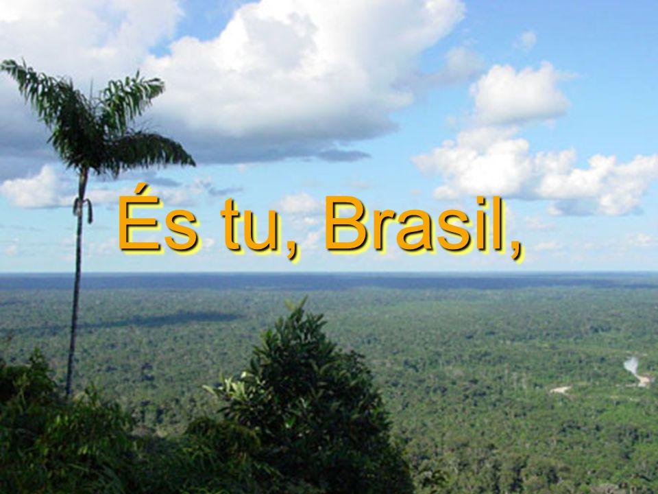 És tu, Brasil,