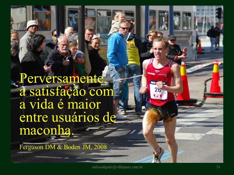 carlossalgado@villajanus.com.br