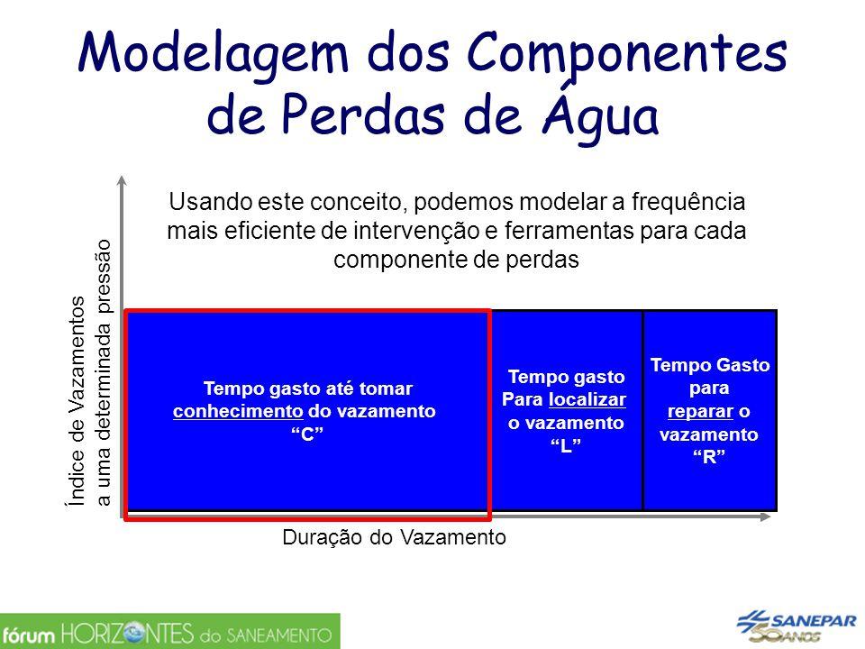 Modelagem dos Componentes de Perdas de Água